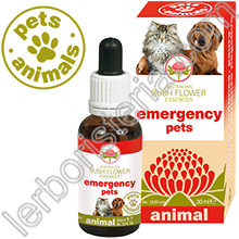 Australian Bush Flower Essences Animal Emergency Pets