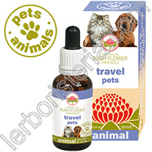 Australian Bush Flower Essences Animal Travel Pets